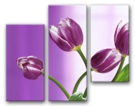 Рисунок на ткани для вышивки бисером Сиреневый этюд Tela Artis (Тэла Артис) СК-001 - 220.00грн.