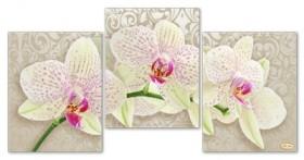 Рисунок на ткани для вышивки бисером Крем брюлле Tela Artis (Тэла Артис) СК-004 - 330.00грн.