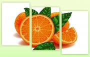 Рисунок на ткани для вышивки бисером Апельсин (полиптих из трёх частей)